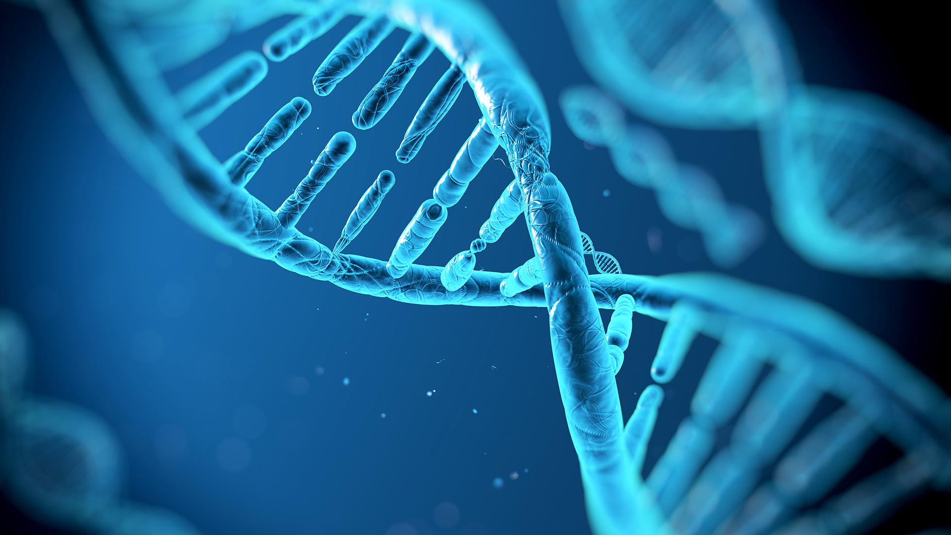 Resultado de imagem para DNA